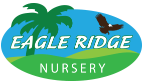 Eagle Ridge Nursery